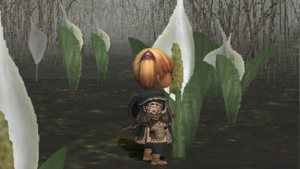 Final Fantasy XI: Stopping to smell the flowers
