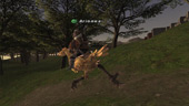 Final Fantasy XI: Ariones and his Chocobo