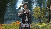 Final Fantasy XIV: M.Steiner enters the world of Eorzea!
