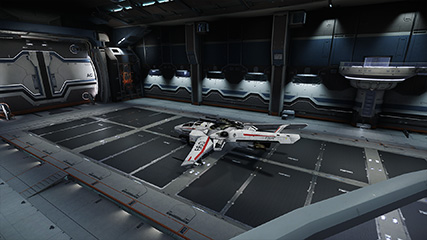 Star Citizen: MS admires his Super Hornet